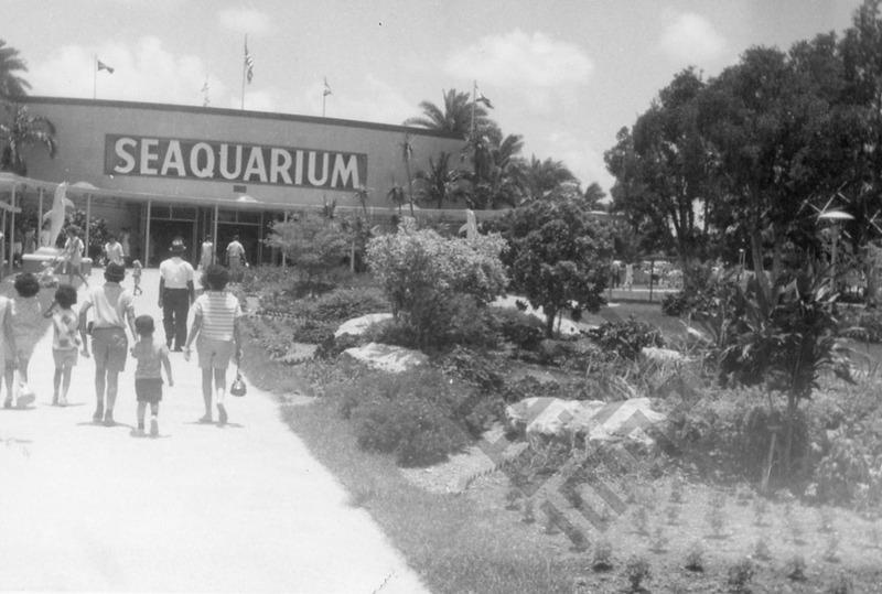 El-Khouri_Miami Vacation 1963_1_wm.jpg