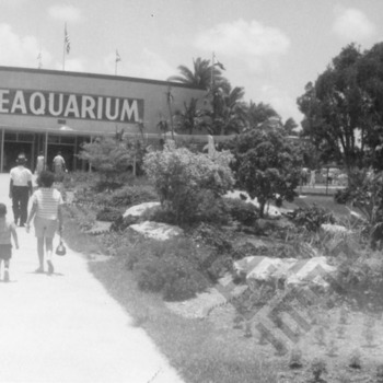 El-Khouri_Miami Vacation 1963_1_wm.jpg