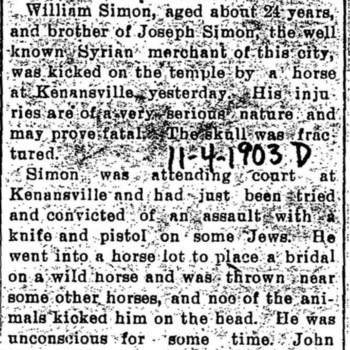 Wilmington_SimonWilliam_1903d_HorsesKickCrushedSkull_Nov4.jpg