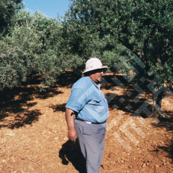 Ishak_Man with Olive Trees-wm.jpg