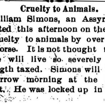 Wilmington_SimonsWilliam_1901d_CrueltyToAnimals_Mar13.jpg