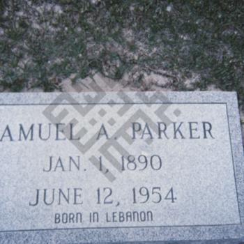 Findelin_gravestone photographs_samuel parker_wm.jpg