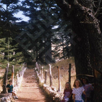 Abed_children in cedars_wm.jpg