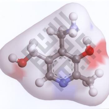 Raja_Khalifah_Chemistry1_wm.jpg