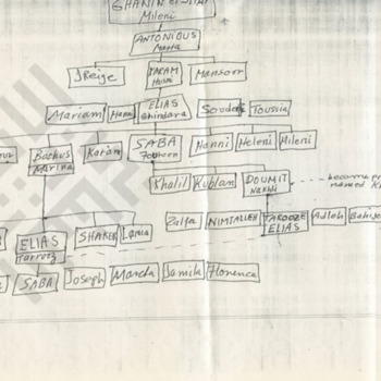 handwritten-family-tree-2_wm.jpg