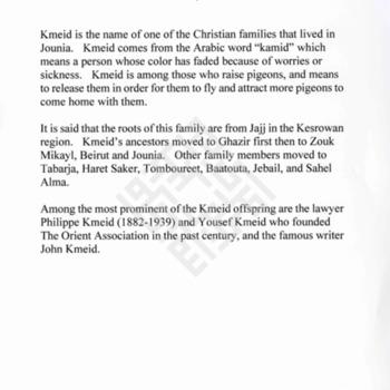 https://lebanesestudies.omeka.chass.ncsu.edu/uploads/EllisCollection/KEllis2018-389.pdf
