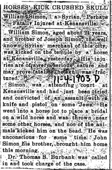 Wilmington_SimonWilliam_1903d_HorsesKickCrushedSkull_Nov4.jpg