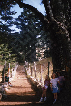 Abed_children in cedars_wm.jpg